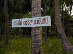 Airport Protest Koh Phangan Island