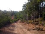 Road Thansadet Thong Nai Pan Koh Phangan