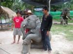 ElephantTrekkingKohPhangan-01