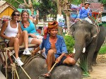 Koh Phangan Elephant Trekking 02