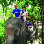 Phangan Safari Tour 01
