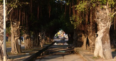 Thongsala-Pier-SA558530