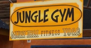 jungel-Gym-00327