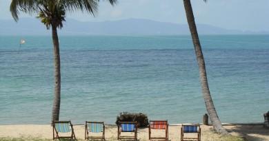 Beach-Life-R0010466