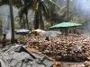 CoconutsPhanganIsland-06