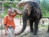 ElephantTrekkingPhangan-02