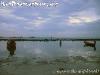 PhanganFullMoonPartyJuly-2005-30