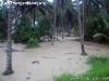 FloodingKohPhanganIsland-10