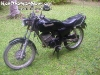 MotorbikeForSalePhangan-04