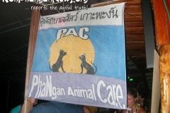 PAC 3rd Anniversary