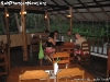 PeppercornRestaurantPhanganIsland-20