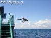 SailrockPhangan-003