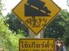 SignsPhangan-55