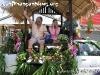 SongkranFestivalPhangan-2004-23