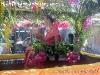 SongkranFestivalKohPhangan-2005-003