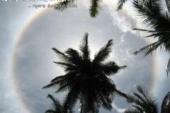 Sun Circle Koh Phangan