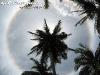 SunCirclePhangan-03
