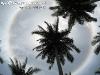 SunCirclePhangan-06