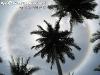 SunCirclePhangan-07
